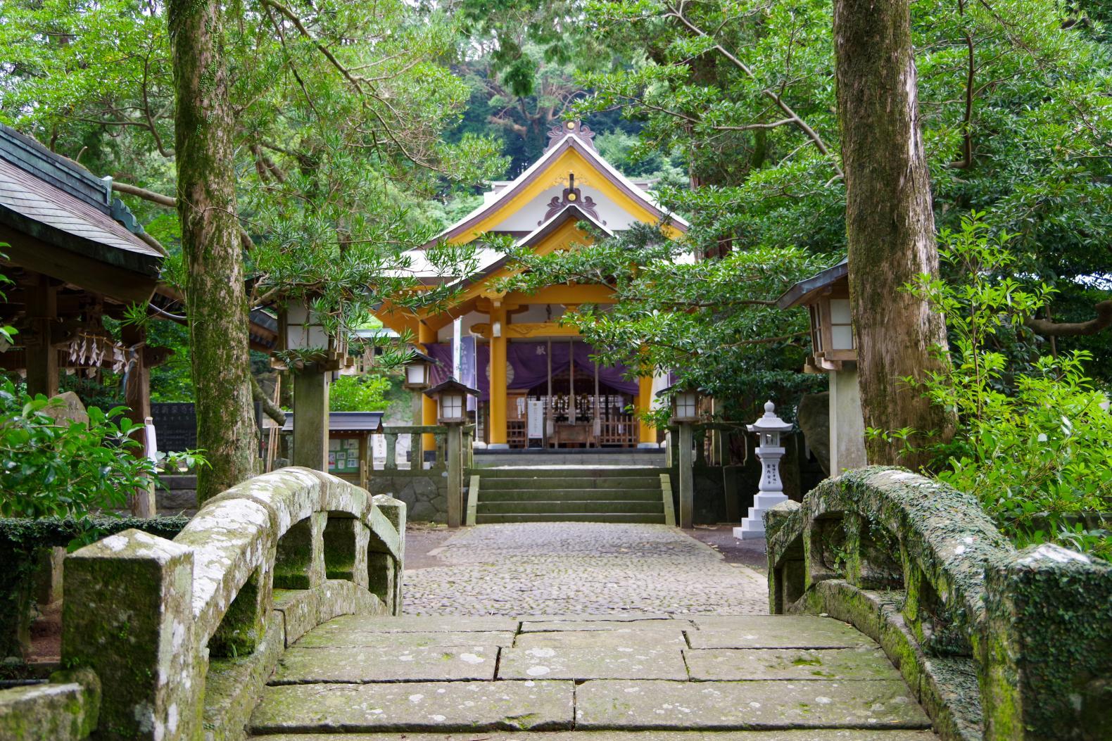 願い事を叶える「住吉神社」の夫婦楠-1