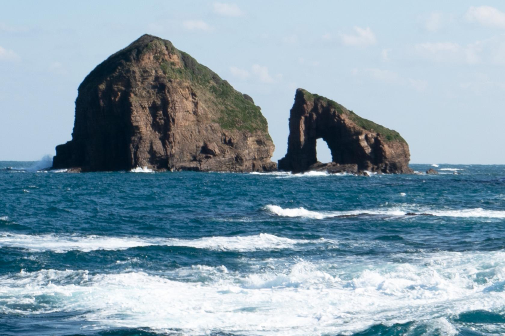 遊覧で海の冒険を満喫-2
