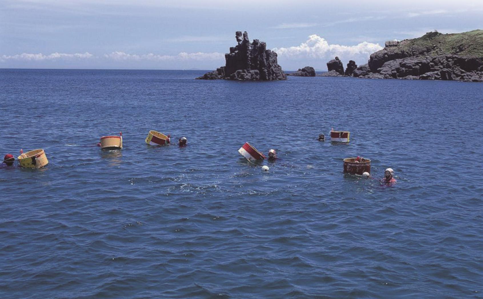 壱岐島に来たら絶対食べて帰りたいウニ-2