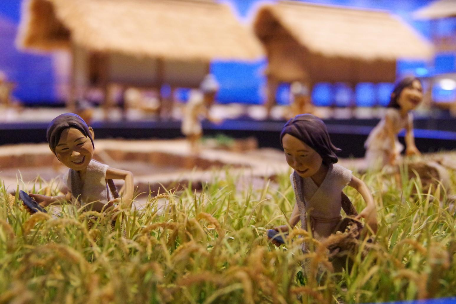 豊かな文明が花開いていた「壱岐の古代史」-3
