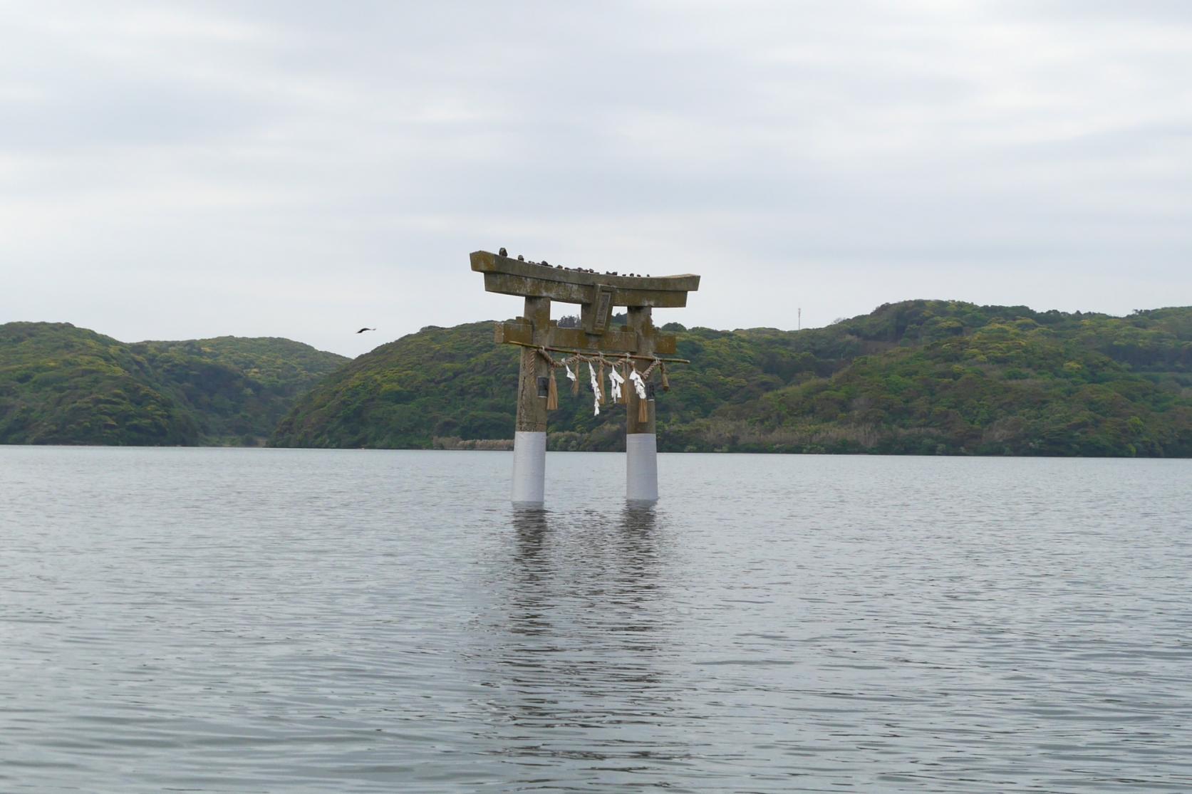 パワースポット「小島神社」の鳥居をくぐる!-1