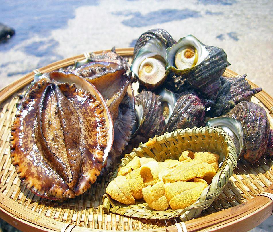 お魚天国!!新鮮・美味な「魚介」-0