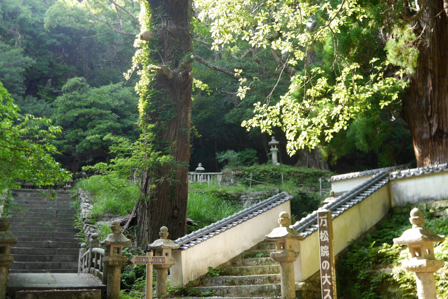 「万松院(ばんしょういん)」~万関橋-8