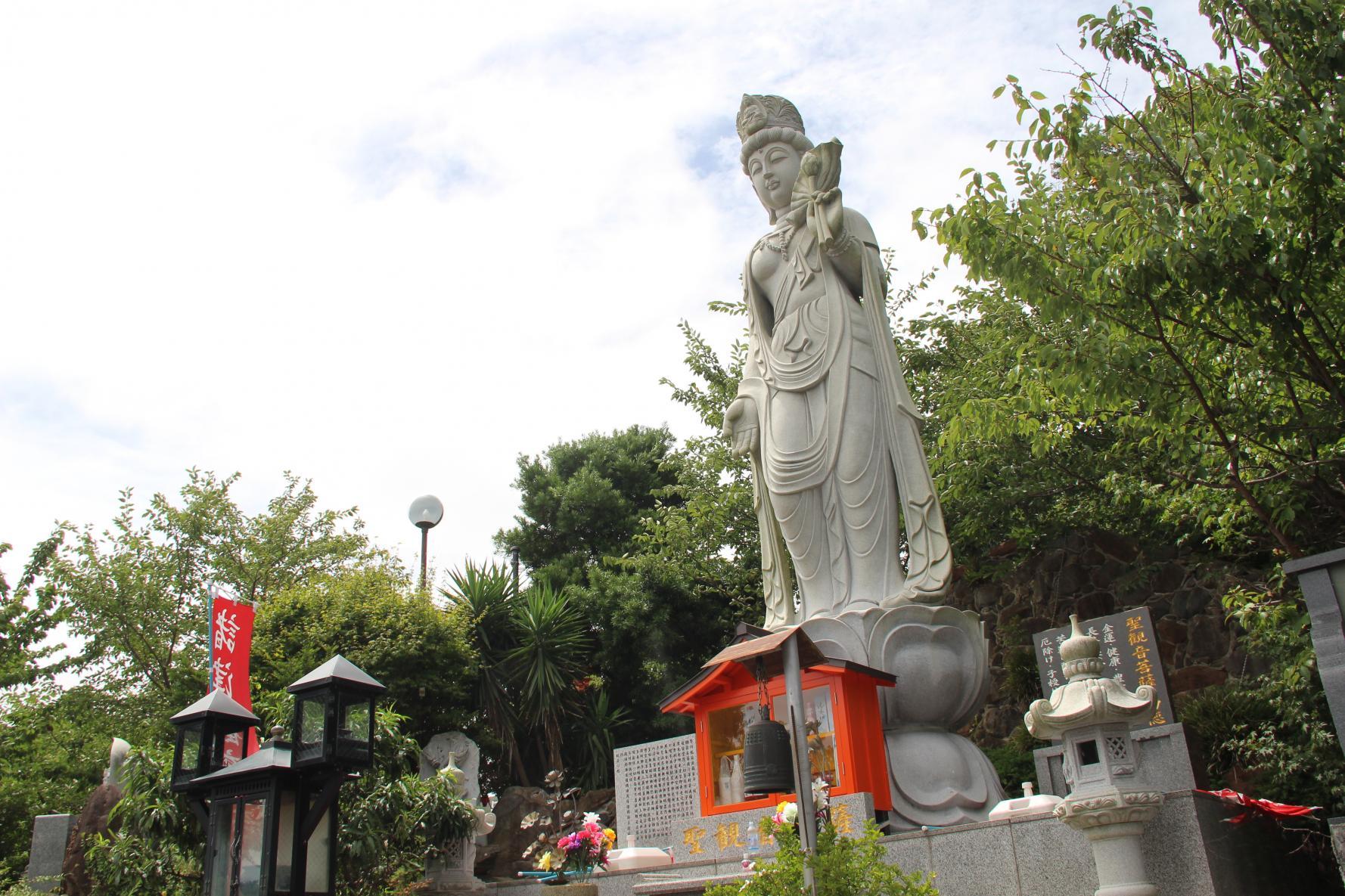 諸津観音白歯雪公園-0