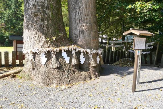 住吉神社-5