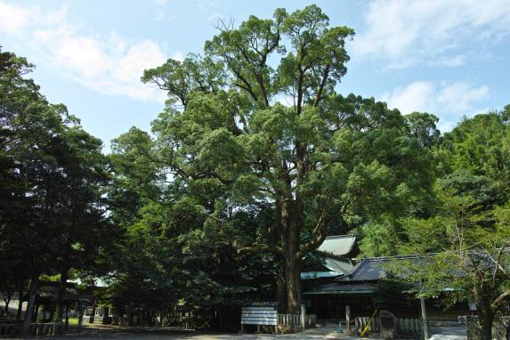 住吉神社-2