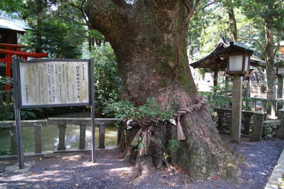 住吉神社-3