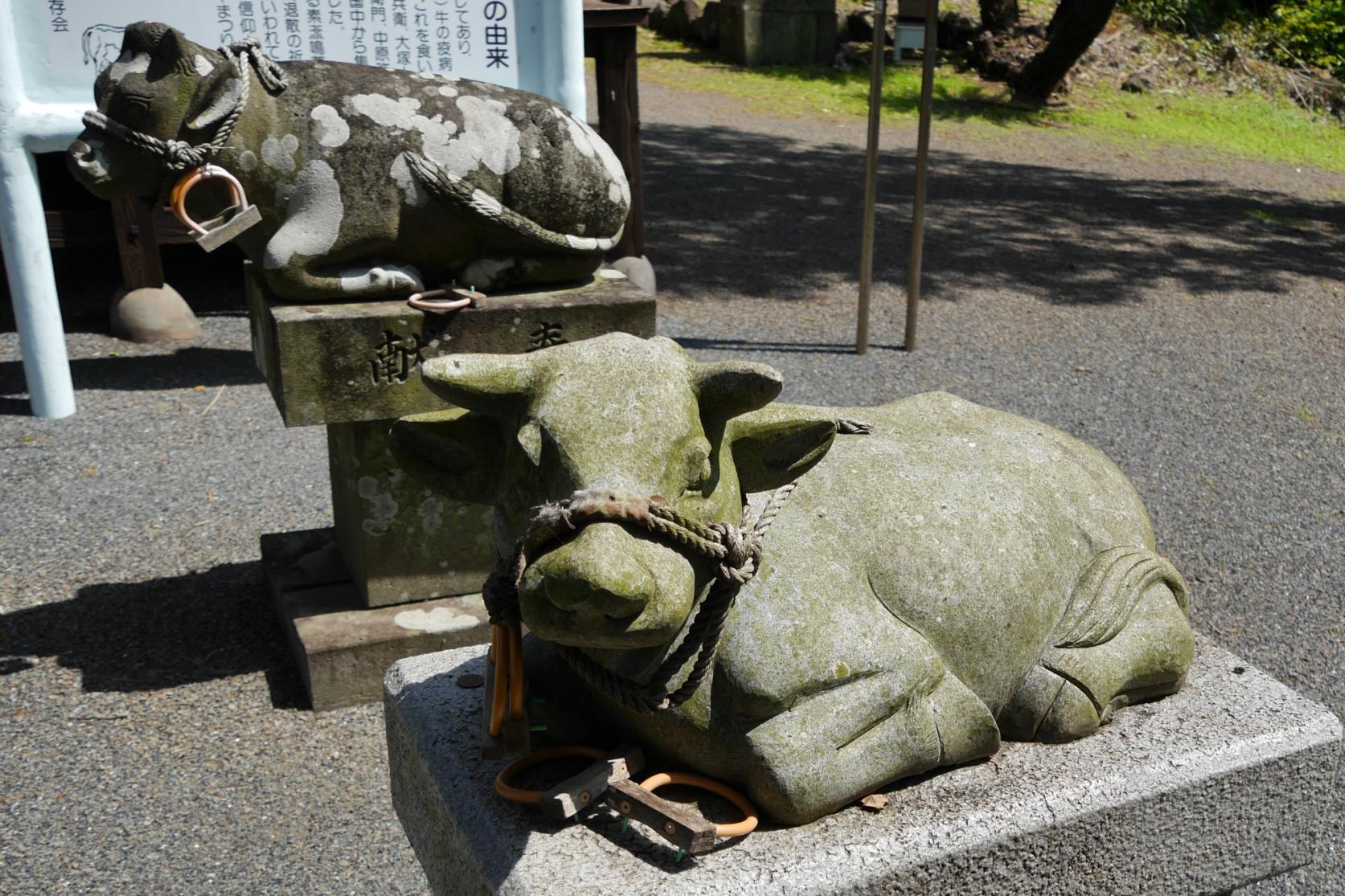 津神社-3